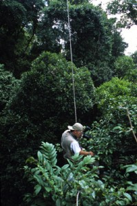 Dante taking photos in the rainforest canopy, Madagascar