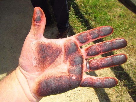 Oil from the Okapi fur on my hands after petting it