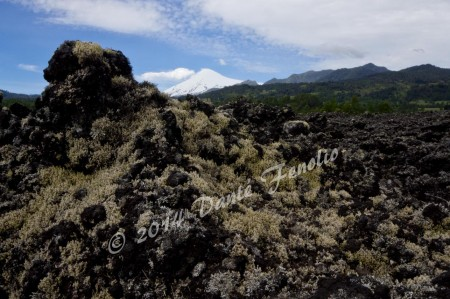 A dry lava field with Villa Rica Volcano in the background...this is just a few months before the latest eruption