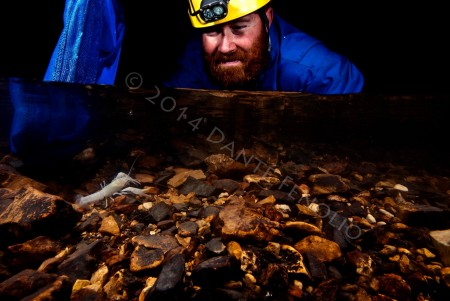 I'll close with one of my favorite shots from the trip... Señor Slay sizes up a cave crayfish during a population count for the United States Fish and Wildlife Service and the Oklahoma Department of Wildlife Conservation.