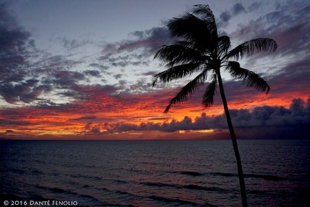 I had a chance to sit back with my family, enjoy a rum & coke, and share memories of my dad while watching the sun set.